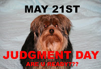 Coco judgment day