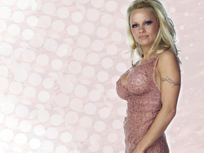 Pamela Anderson Hd Wallpapers 2013