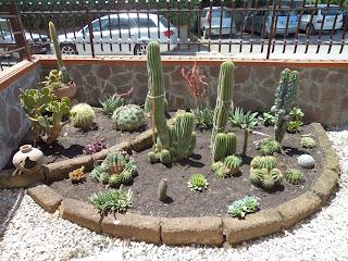 I giardini di carlo e letizia giardino di piante grasse for Abbellire un giardino