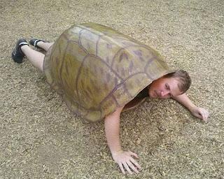 Hola a todos.Me presento Thmhombre-tortuga