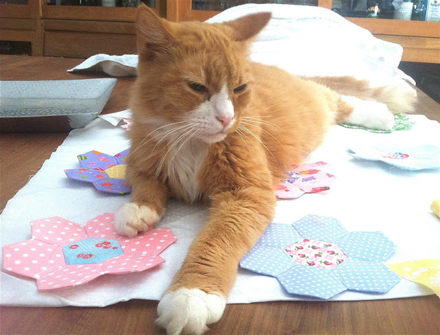 Hexie quilt made from Lakehouse and Susan Branch fabrics and Bailey the orange tabby