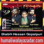 http://audionohay.blogspot.com/2014/10/shabih-hassan-gopalpuri-nohay-2015.html