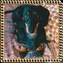 Romy 7 anni uccisa dalla mafia come vendetta! Era Giugno 2002.