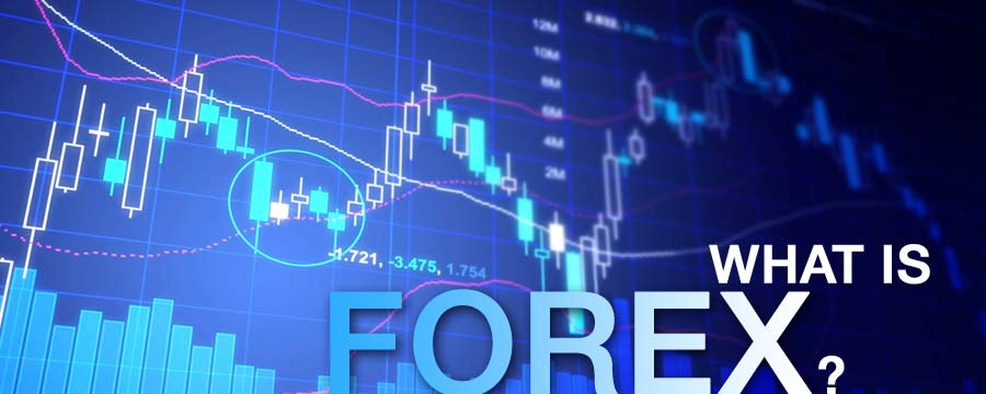 What is option in forex market