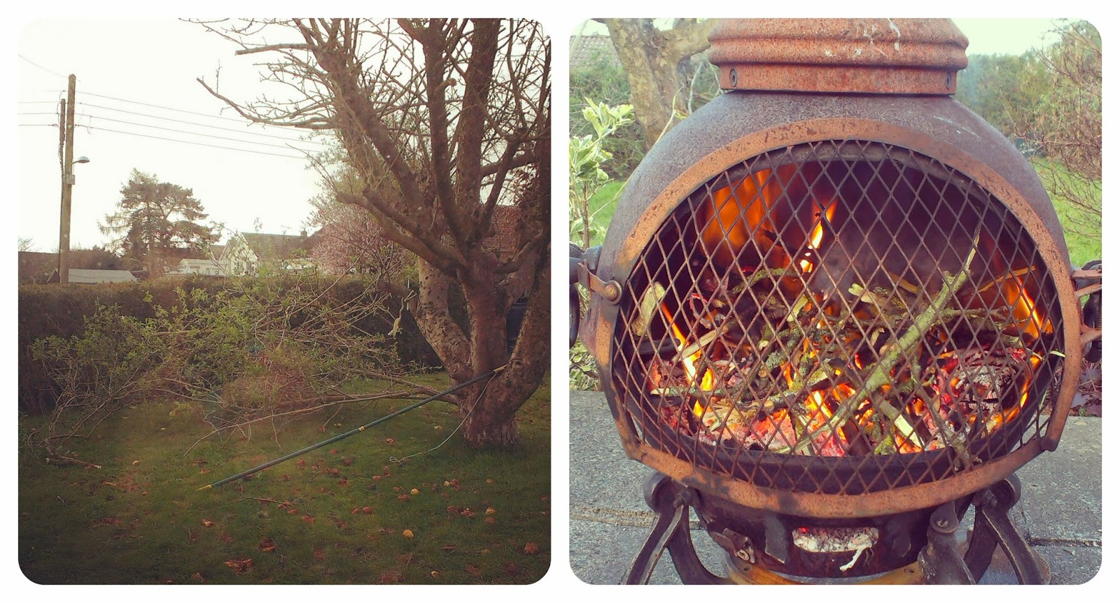 Elder tree pruning and burning in the chimenea