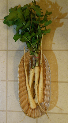 Basket of Parsnips with Greens