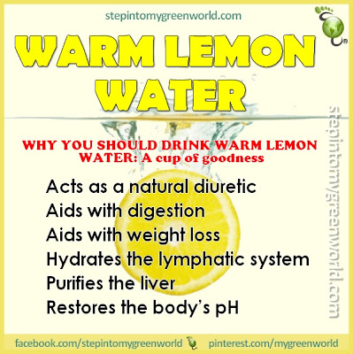Why You Should Drink Warm Lemon Water (http://stepintomygreenworld.com