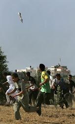 Israel Estado genocida