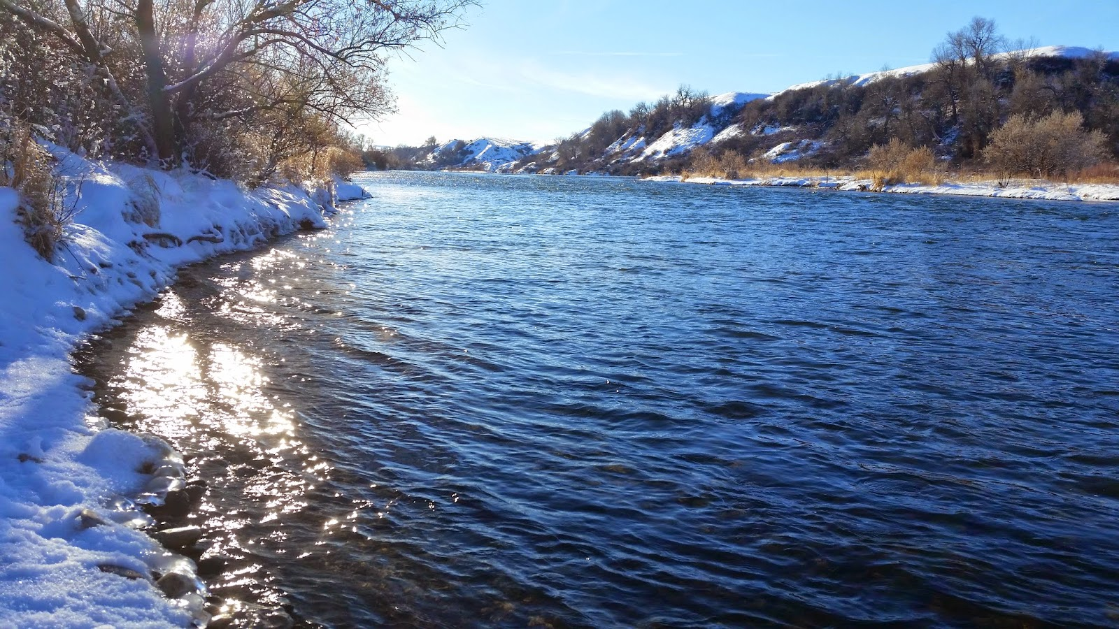 Jon baiocchi fly fishing news the bighorn river mt for Bighorn river fly fishing