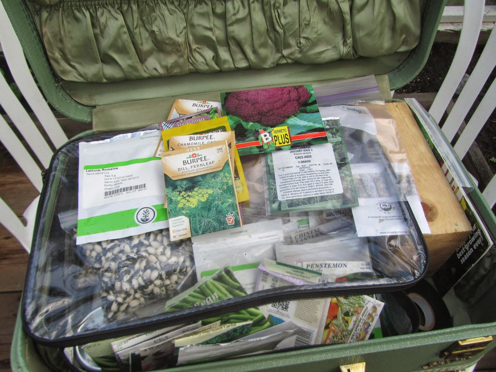 using an old suitcase to save and store seeds