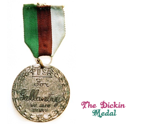 """The Dickin Medal is """"the highest award any animal can achieve while serving in military conflict"""" in the UK. Of the 69 animals awarded it, apparently 32 were WWII messenger pigeons. What did these pigeons do to justify their awards, and more importantly, was there a presentation ceremony?"""