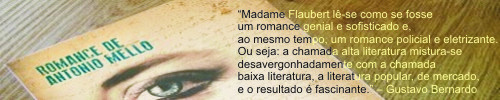 Madame Flaubert, de Antonio Mello