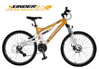 Sepeda Polygon XINDER