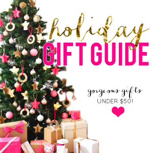 Shop the Gift Guide!