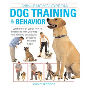 pet training