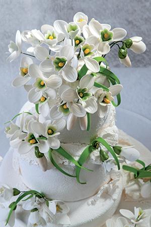 italian cake art per chi vuole avvicinarsi al cake design