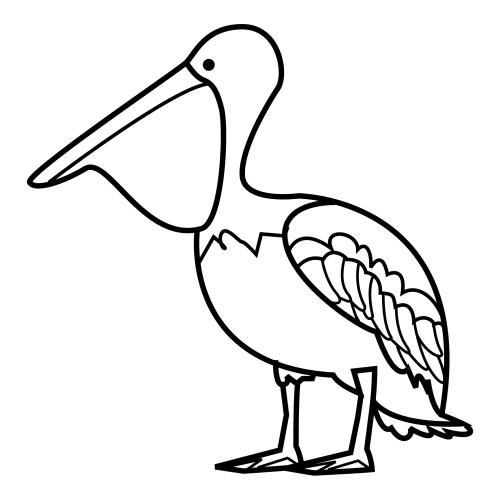 La Chachipedia: Dibujos para colorear pelícanos