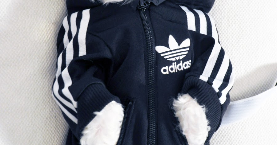 Pets_OFFmag Luxirare Custom Doggy Adidas Tracksuit
