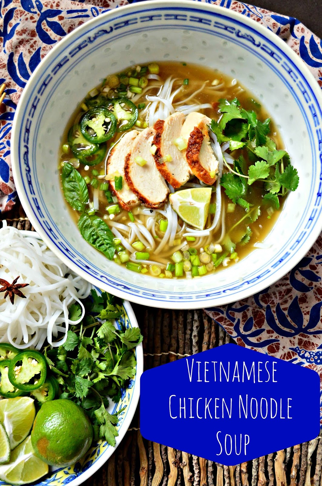 Vietnamese Chicken Noodle Soup and a Wedding in Costa Rica - This Is ...
