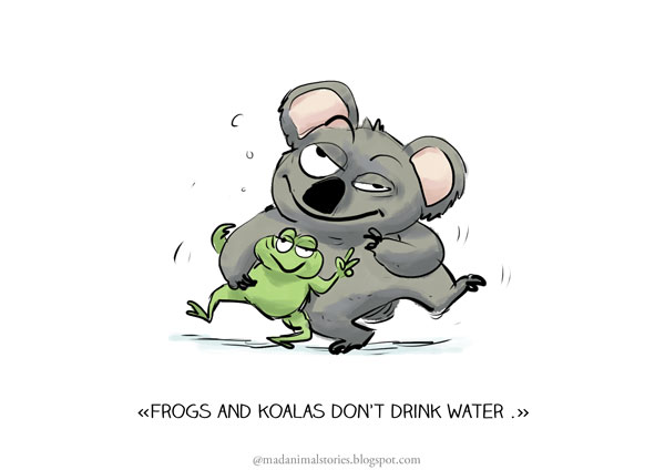 frogs and koalas don't drink water