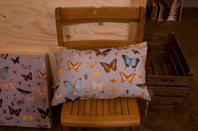 Ella Doran Bugs and Butterflies cushion at Home London 2012