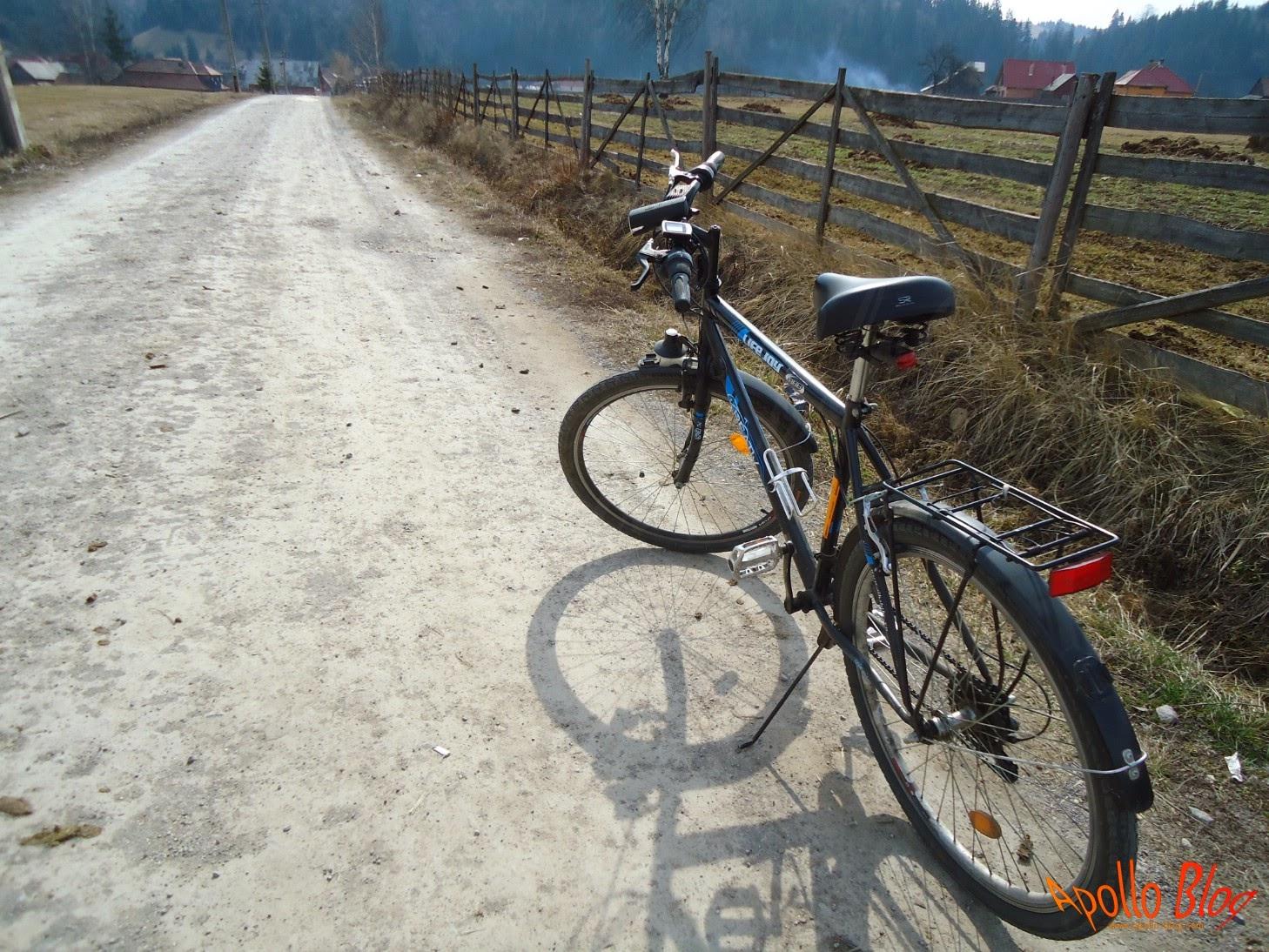 Bicicleta DHS LifeJoy