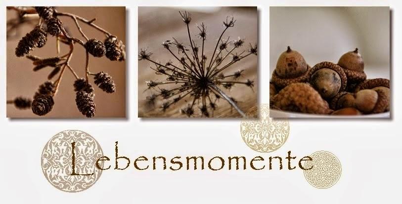 LEBENS - MOMENTE