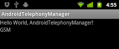 Get phone type using android.telephony.TelephonyManager