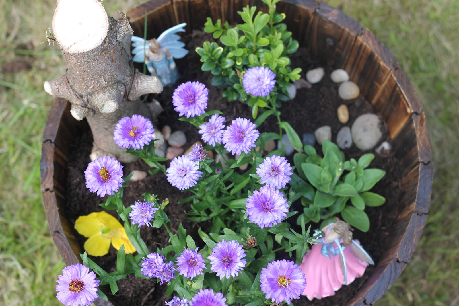 To Create This Fairy Garden We Used: