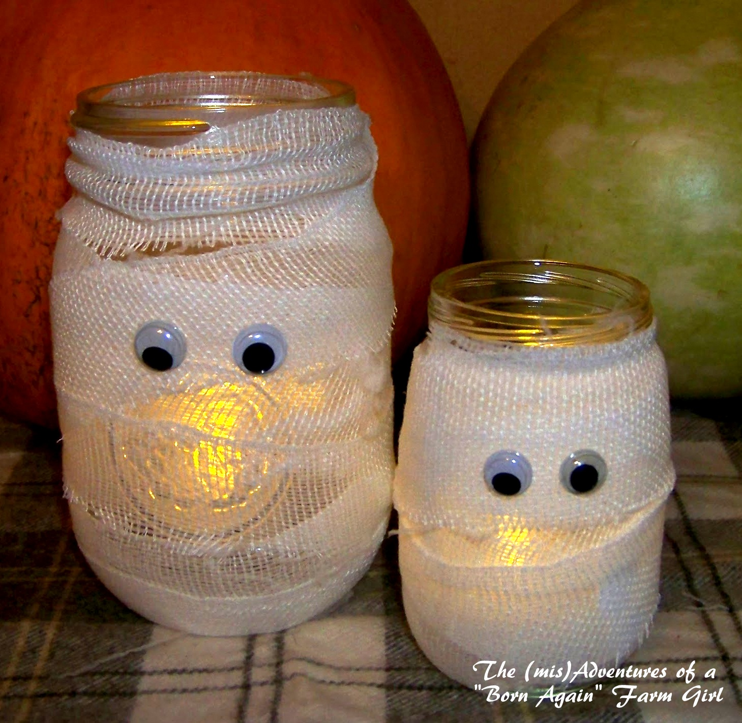 Mummy Jars by Born Again Farm Girl