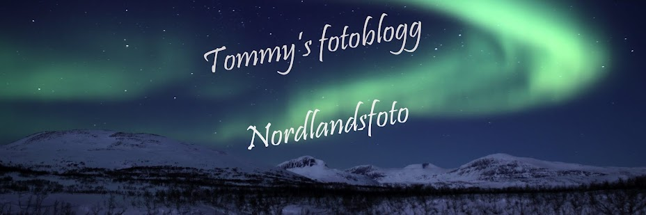 Nordlandsfoto
