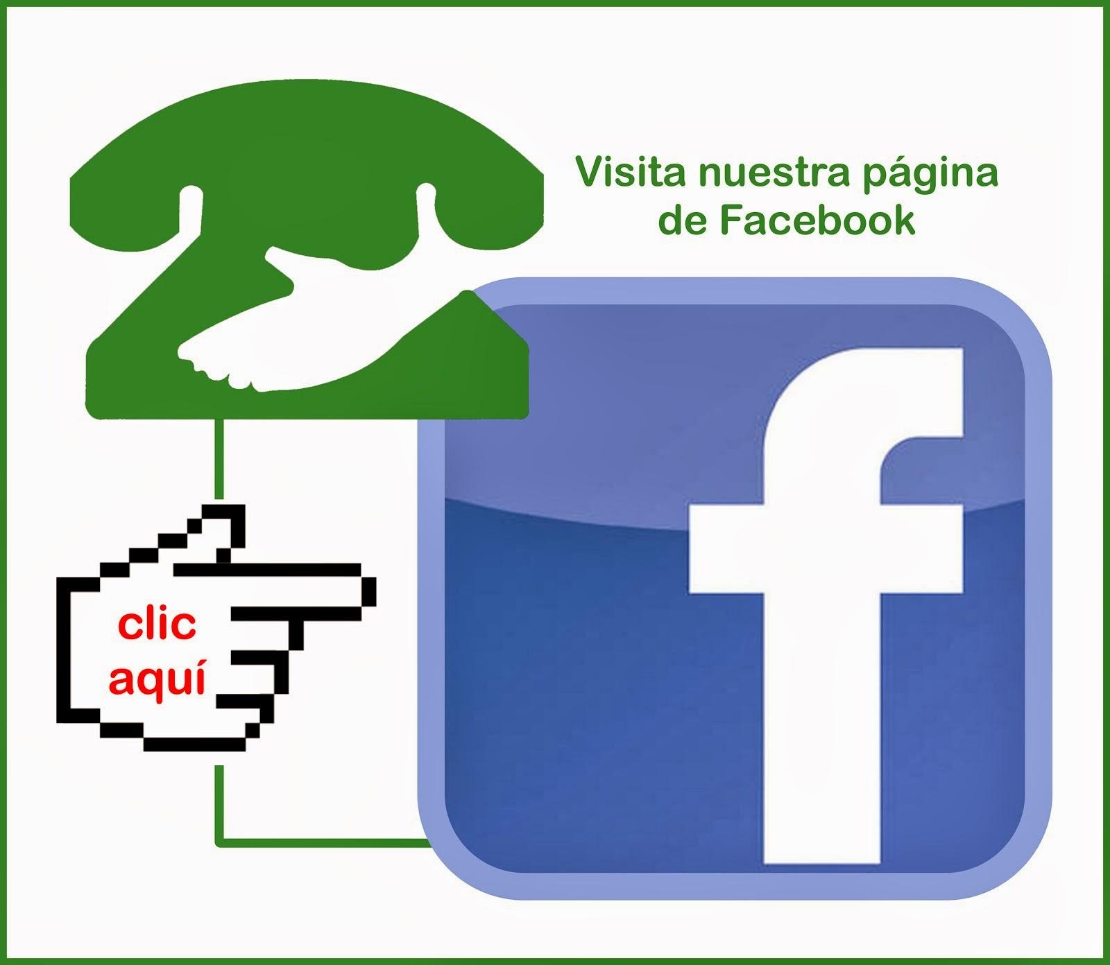Facebook T.E.Murcia