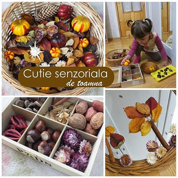 http://clipe-frumoase-cu-ema.blogspot.ro/2013/11/invitatie-la-explorat-cutie-senzoriala.html