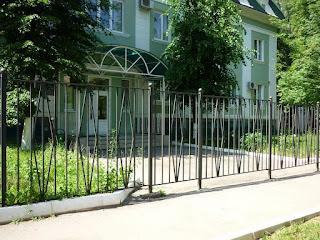 Забор металлический из профильной трубы. Фото 8