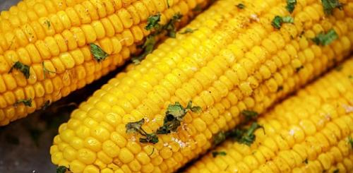 A melhor maneira de preparar milho verde