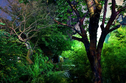 city garden, east village, new york, NYC