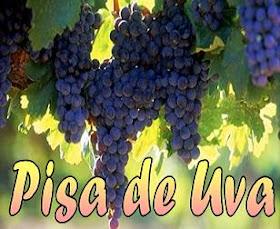 Pisa de Uva en bodegas de Ica