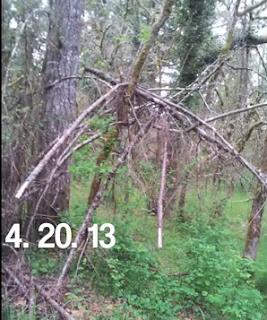 Brown Bigfoot Structures