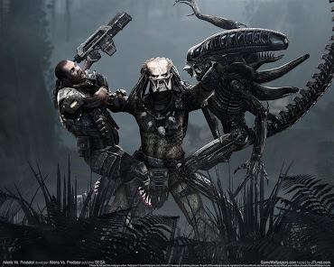#15 Aliens vs Predator Wallpaper