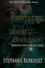 Danube in Candlelight