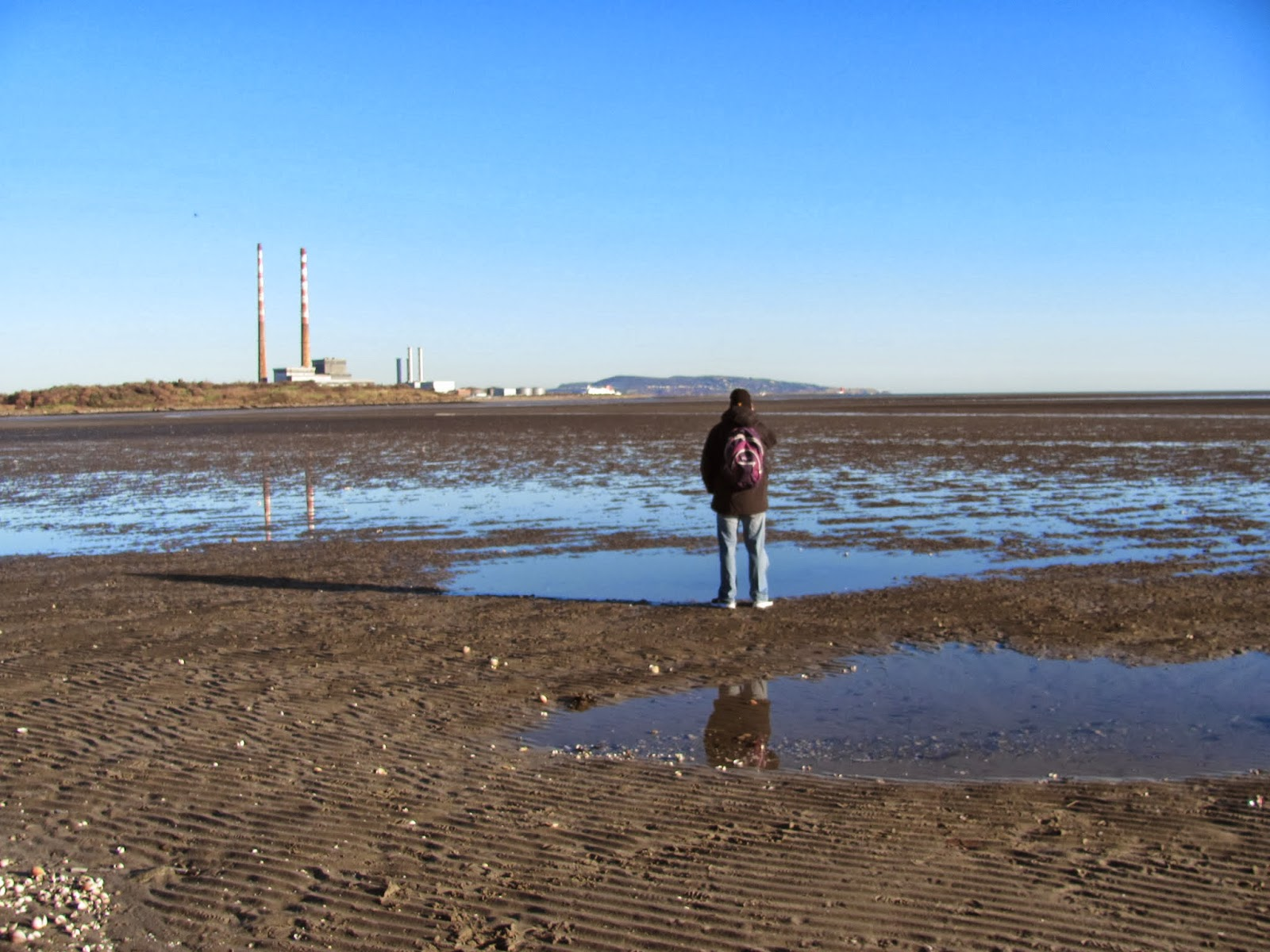 Cory on Sandymount Strand at low tide in Dublin, Ireland