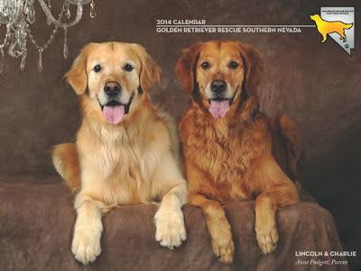 Golden Retriever Rescue Southern Nevada 2014 calendar