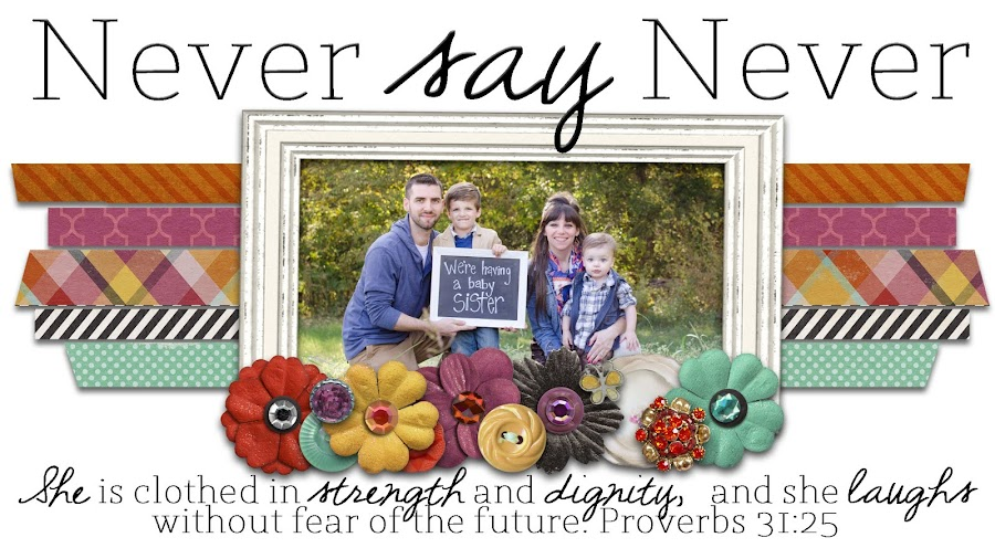 The McAnally Family Blog - Never Say Never