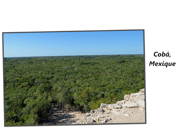 Cobá au Mexique