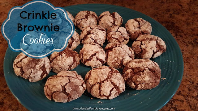 Crinkle Brownie Cookies