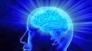 What are the causes of memory loss in Alzheimer's and dementia?