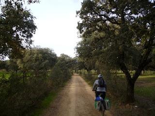 Dehesas camino de Guadalupe