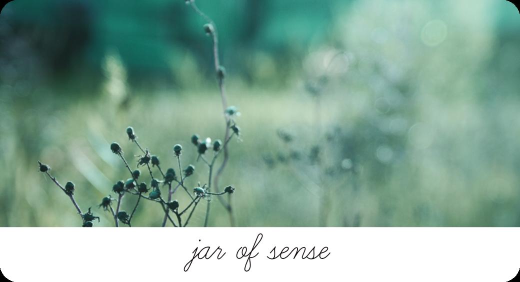 Jar of Sense