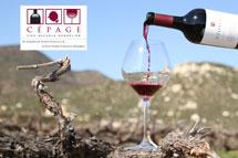 Conoce el Mundo del Vino!!!