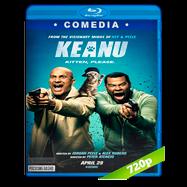 Keanu (2016) BRRip 720p Audio Dual Latino-Ingles